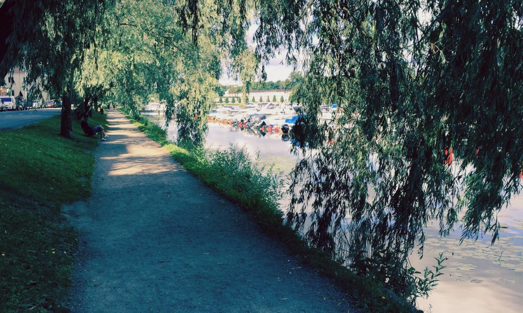 miljö-promenad